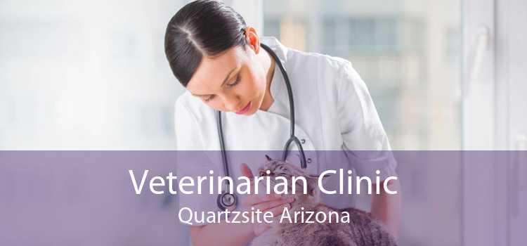 Veterinarian Clinic Quartzsite Arizona