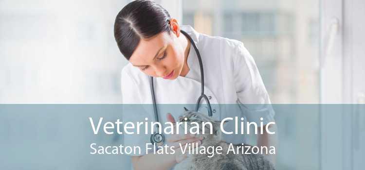 Veterinarian Clinic Sacaton Flats Village Arizona