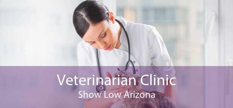 Veterinarian Clinic Show Low Arizona