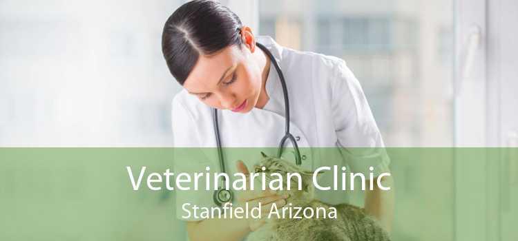 Veterinarian Clinic Stanfield Arizona