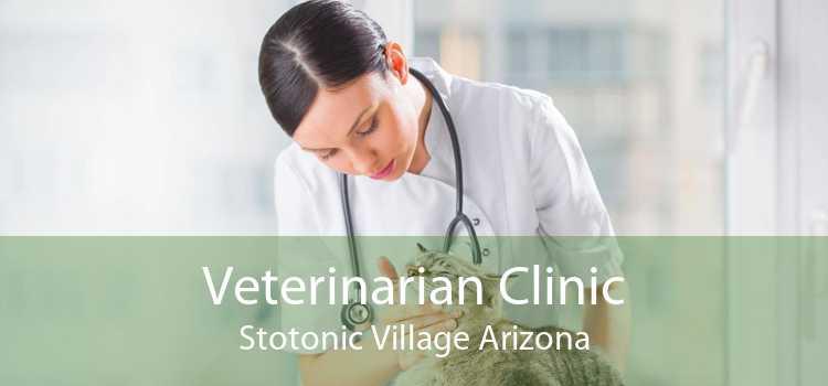 Veterinarian Clinic Stotonic Village Arizona