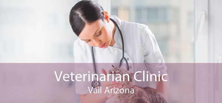 Veterinarian Clinic Vail Arizona