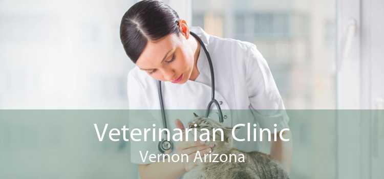 Veterinarian Clinic Vernon Arizona