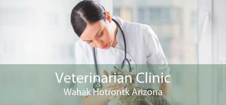 Veterinarian Clinic Wahak Hotrontk Arizona