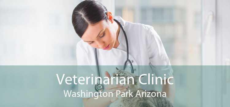 Veterinarian Clinic Washington Park Arizona