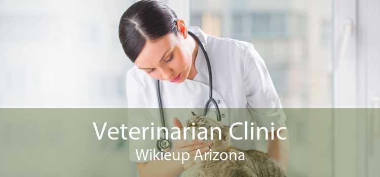 Veterinarian Clinic Wikieup Arizona