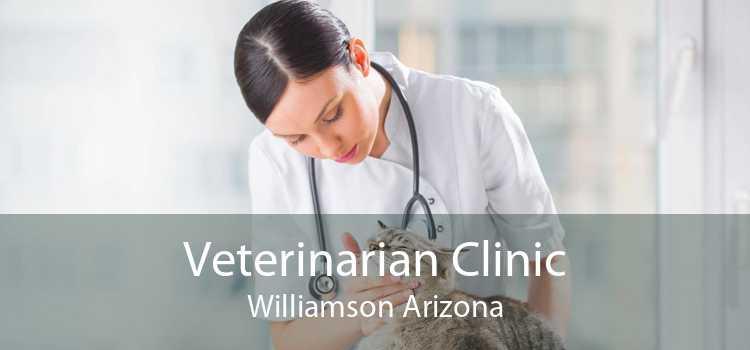 Veterinarian Clinic Williamson Arizona